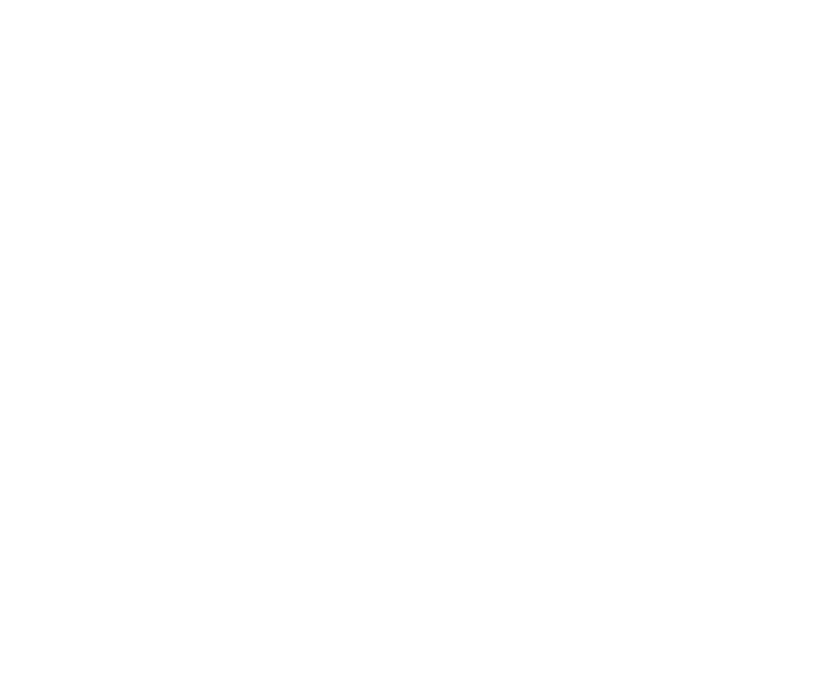 CFO For Small